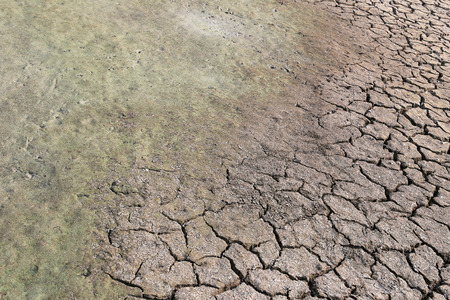 cracked earth: cracked earth and clay soil with water just to dry up because of the heat,countryside of Thailand. Stock Photo