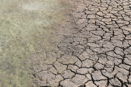 evaporate: cracked earth and clay soil with water just to dry up because of the heat,countryside of Thailand. Stock Photo