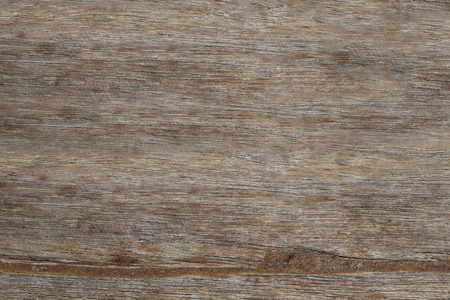 decorate: detail of old wood texture for the design background.