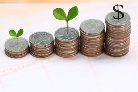 young plant grown to stack silver coin in business growth concept on paper documents. Stock Photo