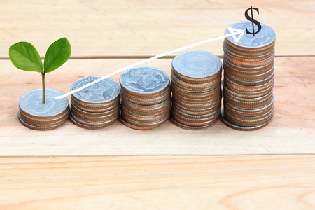 young plant: young plant grown to stack silver coin in business growth concept on wood floor and Arrow points to top.