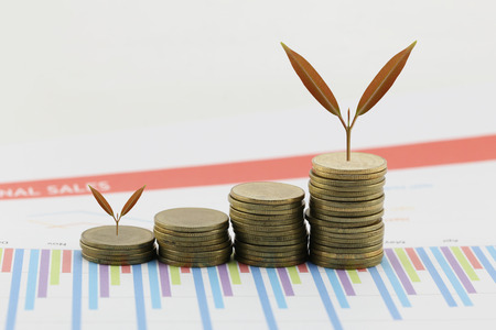 young plant: young plant grown to stack gold coin in business growth concept on wood floor. Stock Photo