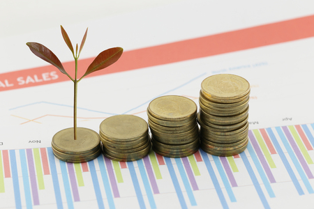 young plant grown to stack gold coin in business growth concept on wood floor. Stock Photo