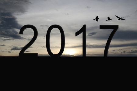 Silhouette of number 2017 on the house roof and sunset in twilight sky,concept of the New Year and Christmas.