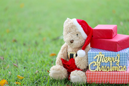 Teddy bear and gift boxes on the lawn in concept of giving gifts in Festival and Event of Christmas Day.