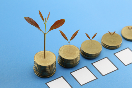 grown: young plant grown to stack gold coin in business growth concept on wood floor. Stock Photo