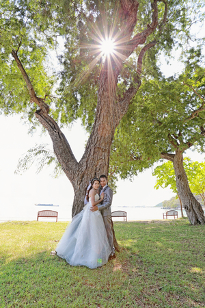 prewedding: photograph of Pre wedding Asian couples Under a tree in a flower garden in concept of starting a life partner and family life. Stock Photo