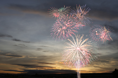 New year fireworks on twilight sky background for design idea in your work.