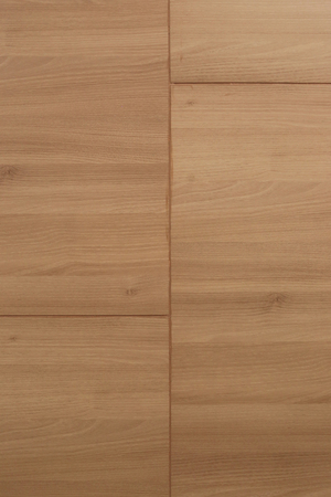 Brown vintage wood texture for the design nature surface background. 免版税图像