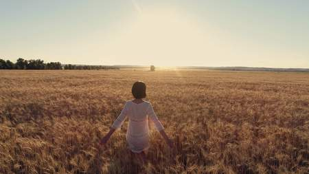Aerial photography Girl running cross the wheat field at sunset. Slow motion, high speed camera