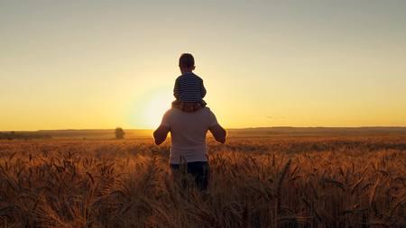 Het gelukkige moeder van de familievader en twee zonen die op een tarwegebied lopen en op de zonsondergang letten Stockfoto - 88931200