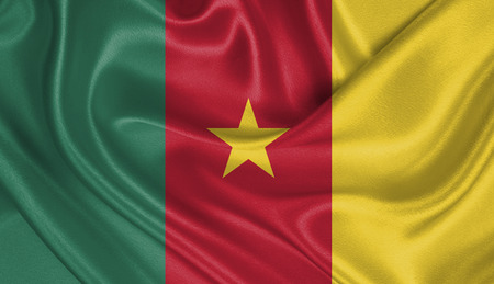 cameroonian: Flag of Cameroon Stock Photo