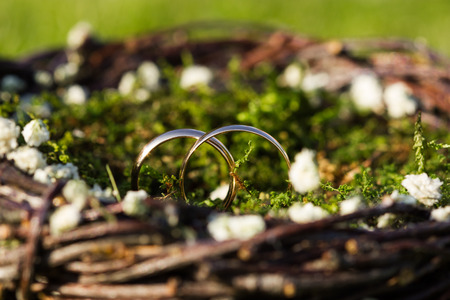 結婚式: 2 黄金の指輪草や花のクローズ アップのバスケット。結婚式のコンセプト