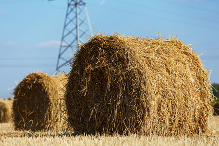 hayrick: Haystack at field during farm job. Rolls of hay lying at ground with high voltage power line in background. Agriculture or farmer concept
