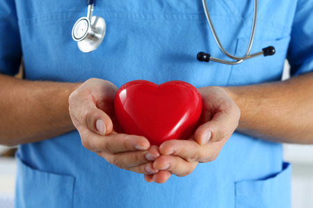 heart doctor: Male medicine doctor wearing blue uniform hold in hands and cover red toy heart closeup. Cardio therapeutist, physician make cardiac physical, heart rate measure, arrhythmia, old age life concept Stock Photo