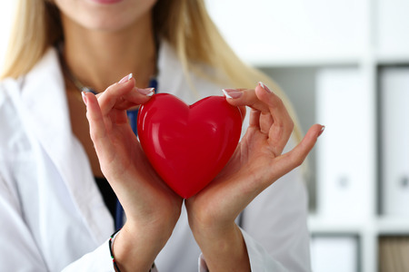 heart doctor: Female medicine doctor hands holding and covering red toy heart closeup. Cardio therapeutist, student education, physician make cardiac physical, heart rate measure, arrhythmia concept
