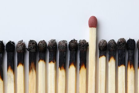 New intact match standing out from plenty burned fellows on white background. Dignity and self-esteem concept