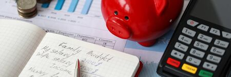 Close-up of red piggy bank terminal and notebook with notations. Monthly expenses on rent car food and credit. Cash money on desktop. Family budget concept Standard-Bild
