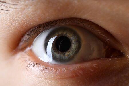 Oeil droit de couleur vert gris mâle en gros plan technique de faible luminosité Banque d'images