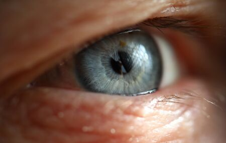 Male gray blue colored right eye in low light technique close-up