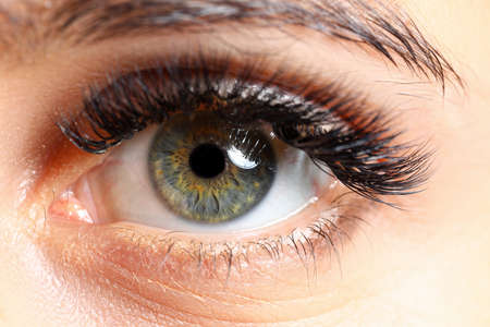 Beautiful female green colored right eye with eyelashes extensions close-up Imagens
