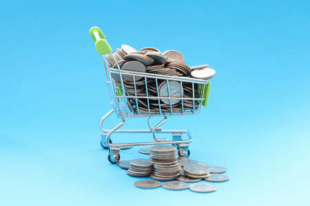 Shopping basket containing coins. How to deal with shopaholism concept