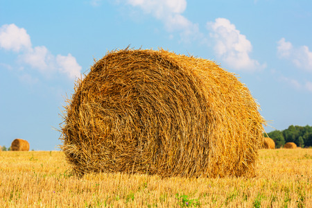 hayroll: Hay bale on the field beneath cloudy sky