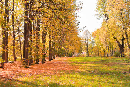 Autumn landscape in the village of Tarkhany