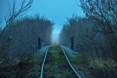 Empty abandoned railway path goes through forest in hazy distance. Dramatic blue colors.