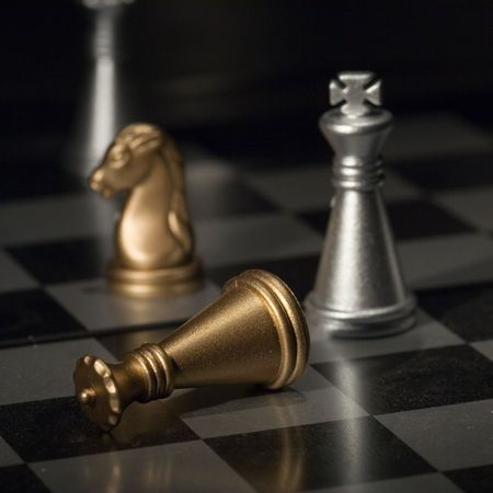 King defeated at the chessboard (equipment - light brush) photo