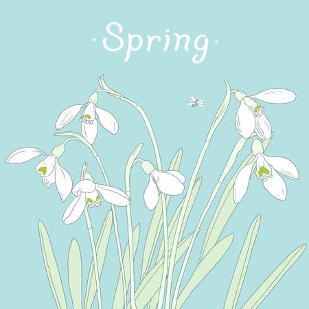 Snowdrops spring bouquet. Hand-drawn vector illustration. Card, invitation template