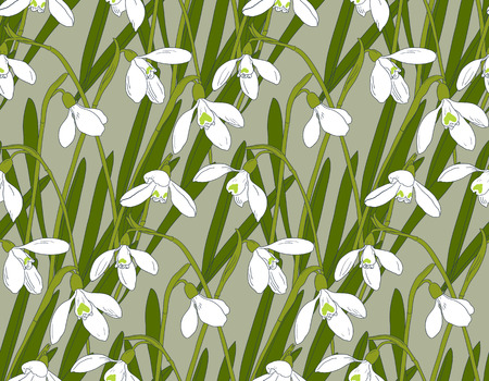 Snowdrops spring seamless background. Hand-drawn vector illustration