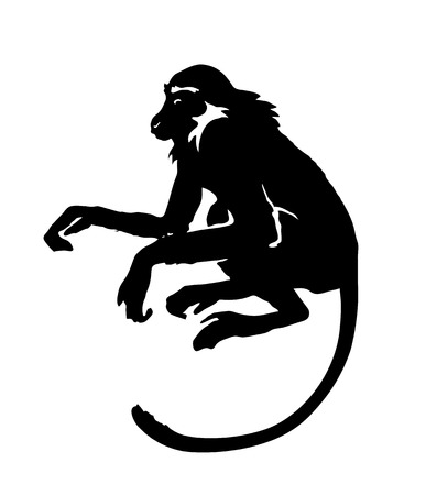 Monkey. Hand drawn silhouette of animal on white background