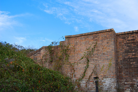 Florida, Fort Pickens, Pensacola, sea grass, sea oats, Sunset, old brick, decaying building, falling down building, exposed brick, vines, wild flowers, daisies