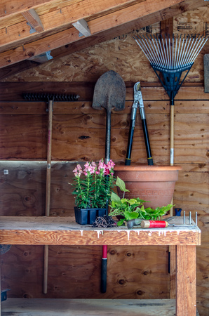 Interior of a garden shed with tools and plants Reklamní fotografie