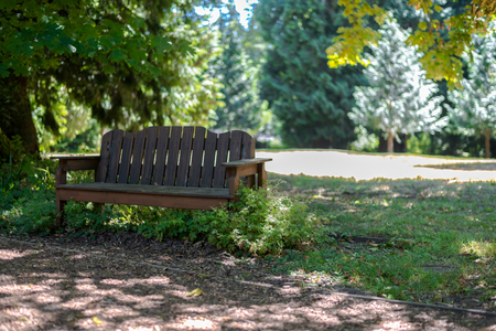 Wooden bench next to a path in the park in dappled sunlight Stock Photo