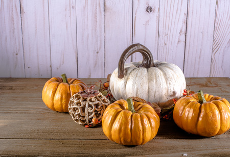 One large white and four smaller pumpkins with space