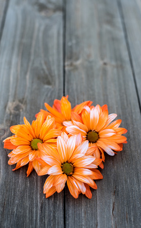 four orange flowers on wooden background with space