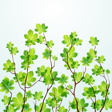 Vector Spring tree background. EPS10 Illustration
