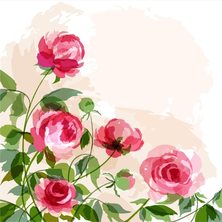 pfingstrosen: Romantischen Hintergrund mit Pfingstrosen.  Illustration