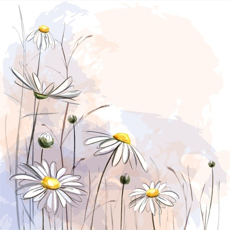 Romantic background with blooming ox-eye daisys. EPS10 Vector