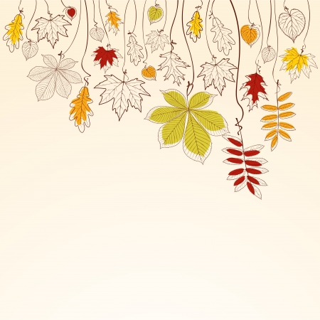 autumn leaf frame: Hand drawn autumn falling leaves background Illustration