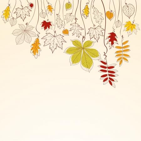 foglie di quercia: Mano che disegnato autunno foglie sfondo