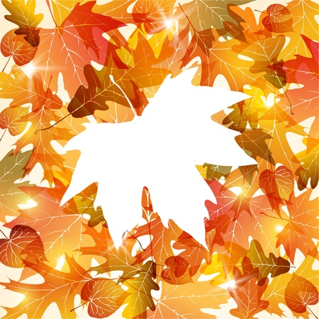 Picture of autumn leaves with place for text. EPS10 Illustration