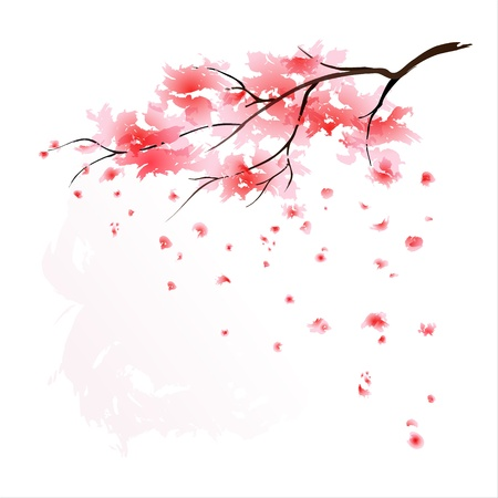 Stylized Sakura blossom - Japanese cherry tree with flying petals. EPS10. Vector