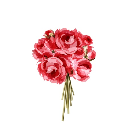 Bouquet of peonies  All elements are separate   Vector