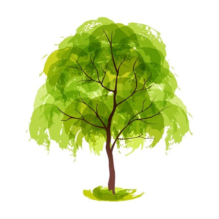 Vector illustratie van gestileerde zomer boom EPS 10