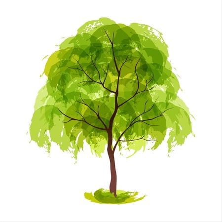 single tree: Vector illustration of stylized summer tree  EPS 10 Illustration