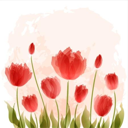 Romantique fond avec des tulipes en fleurs