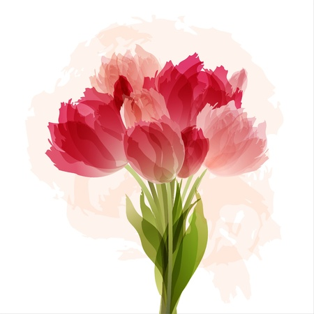 Floral background with bouquet of tulips   Illustration